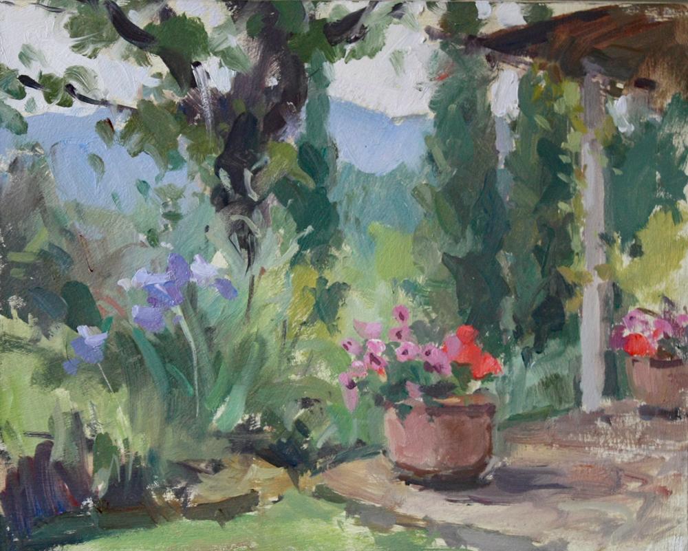 Terrace flowers, Umbria