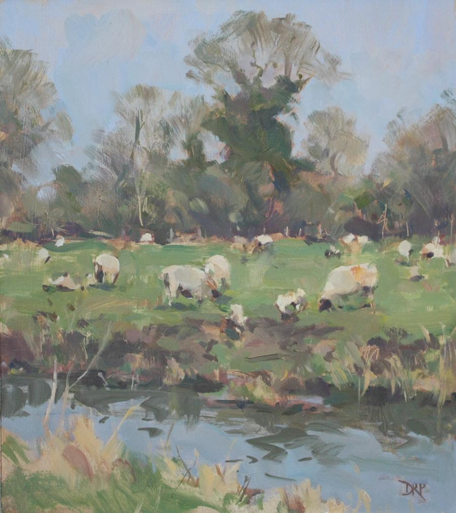 Spring lambs, Passenham meadow
